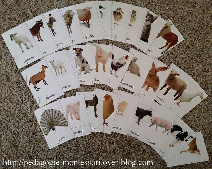 Nomenclatures des animaux de la ferme Après plusieurs heures de travail, je partage avec vous mes cartes nomenclatures des animaux de la ferme en format jpeg de taille 10x 15 cm. N'hésitez pas à faire part de vos remarques et retours auprès de vos enfants...
