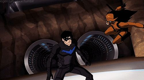 Season 2 Episode 9 Darkest: Nightwing vs Tigress this gif leaves out the fact that Nightwing proceeds to slam her head into the ground...
