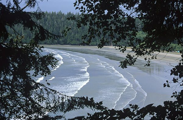 Pachena Bay Surf, Bamfield BC | Stock Photography by outNbout