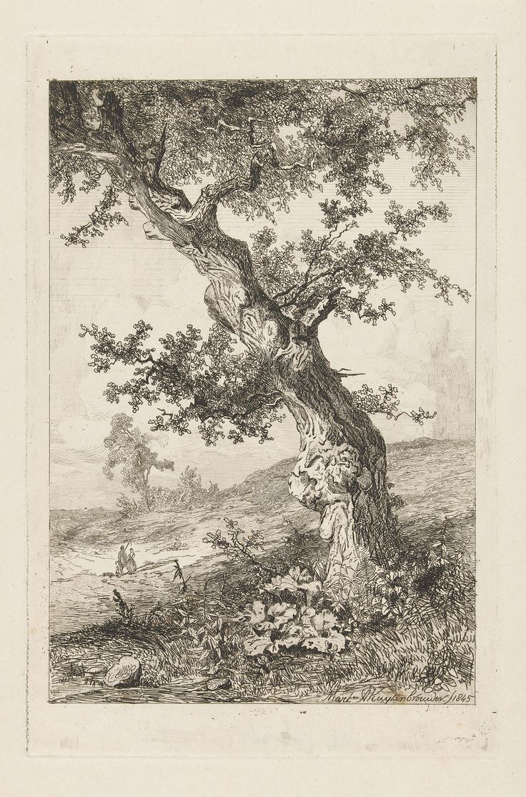 Martinus Antonius Kuytenbrouwer (jr.) | Heuvelachtig landschap met een scheve boom en twee wandelaars, Martinus Antonius Kuytenbrouwer (jr.), 1845 | In een heuvelachtig landschap, met op de voorgrond een scheef gegroeide boom, lopen een man en een vrouw met twee honden.