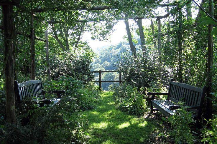 Garden Design: Dan Pearson / torrecchia / green home