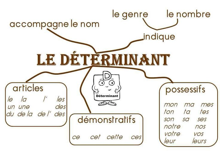 25  best ideas about pluriel des mots on pinterest