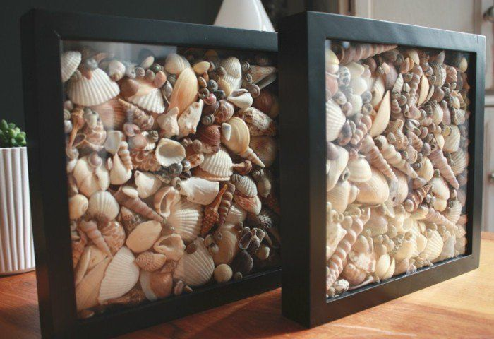 decoration coquillage mer, cadres photo en noir, style