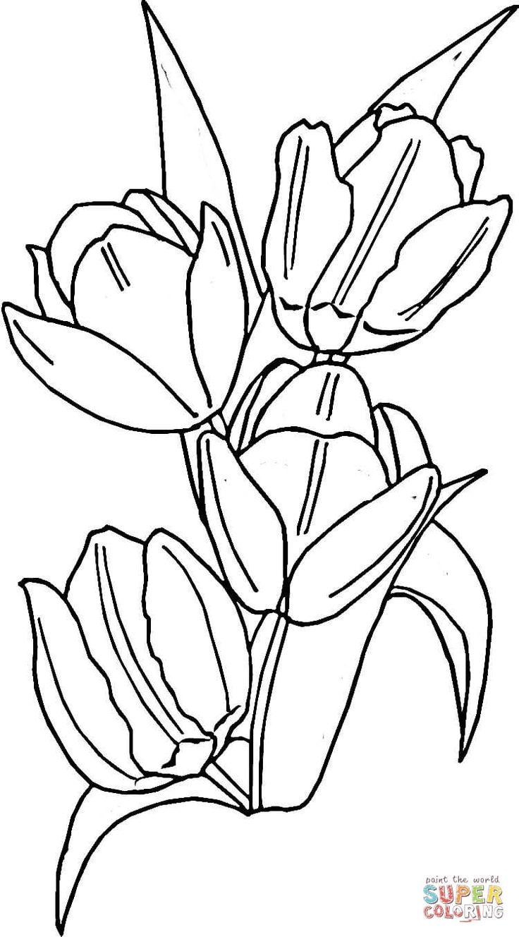 Tulips   Super Coloring   Coloriage, Coloriage à imprimer gratuit, Fleurs dessinées à la main
