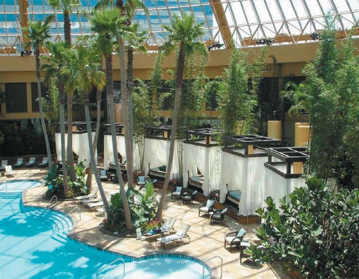 Amazing Interior Plant Designs