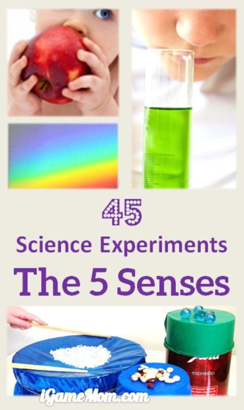 10 Best images about Science Fair! on Pinterest | Science ...