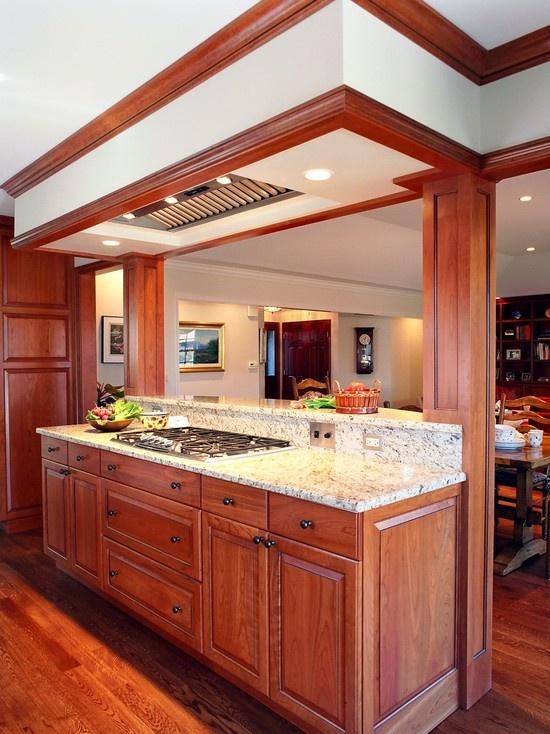 Chicago Kitchen Remodeling Decor 150 best kitchen remodel images on pinterest | kitchen design