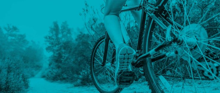 Best Bike Buying Guide - Consumer Reports