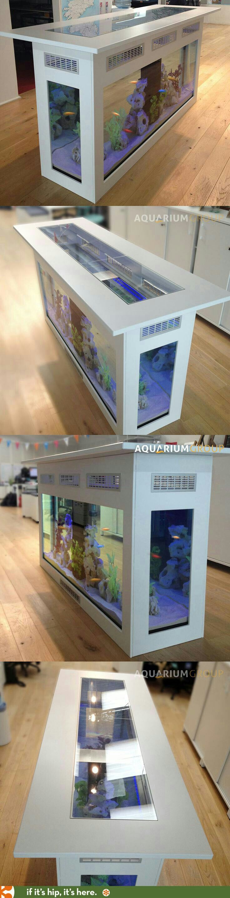 10 best Fish Tank Therapy images on Pinterest