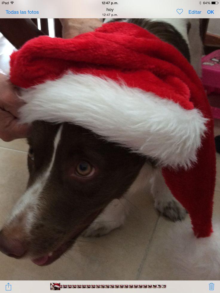 Mi Martina en Navidad