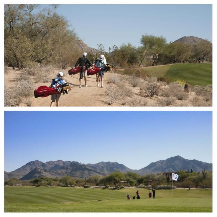 Top: Contestants carrying their new Taylormade golf bags during a practice round for the 2016 PGA jr. League Golf Championship presented by National Rental Car held at Grayhawk Golf Club on November 18 2016 in Scottsdale Arizona.  Bottom: Contestants on the second hole during a practice round for the 2016 PGA jr. League Golf Championship presented by National Rental Car held at Grayhawk Golf Club on November 18 2016 in Scottsdale Arizona. (Photos by Traci Edwards/PGA of America) #golf…