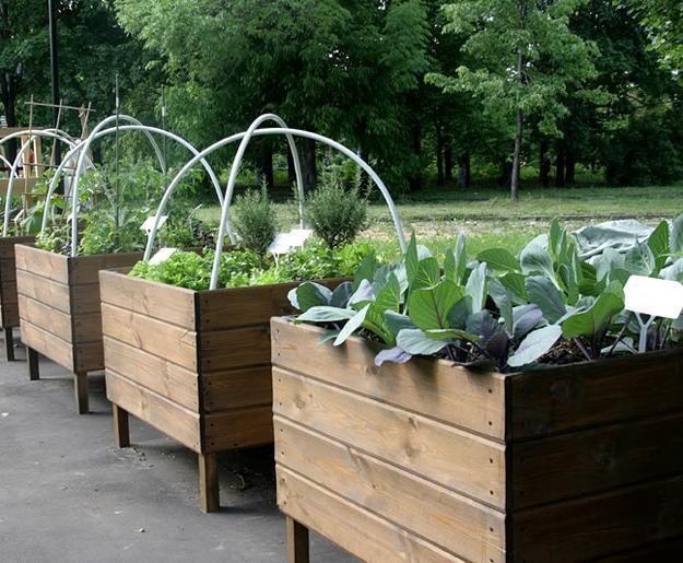 wood boxes for vegetable garden design