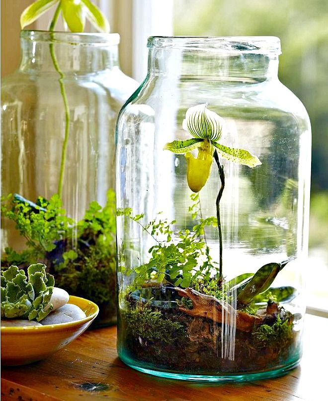 Want to Green Your Home Decor 11 Eco-Friendly Design Ideas to Explore