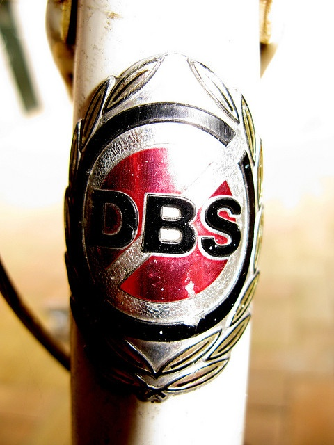 DBS Bicycle Logo