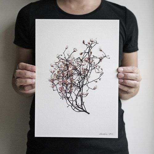 botanical print photography