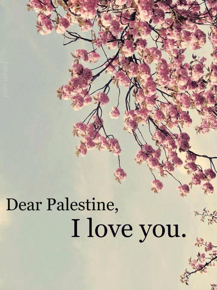 Stand in Solidarity with the Palestinians. Free Palestine. Hell no I will never stand with people that are hell bent on terrorism. Obama is just as sick as the Palestinian people.