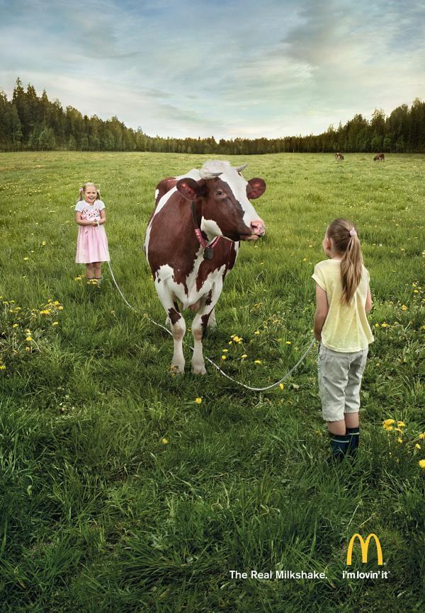 Simple comme une vache