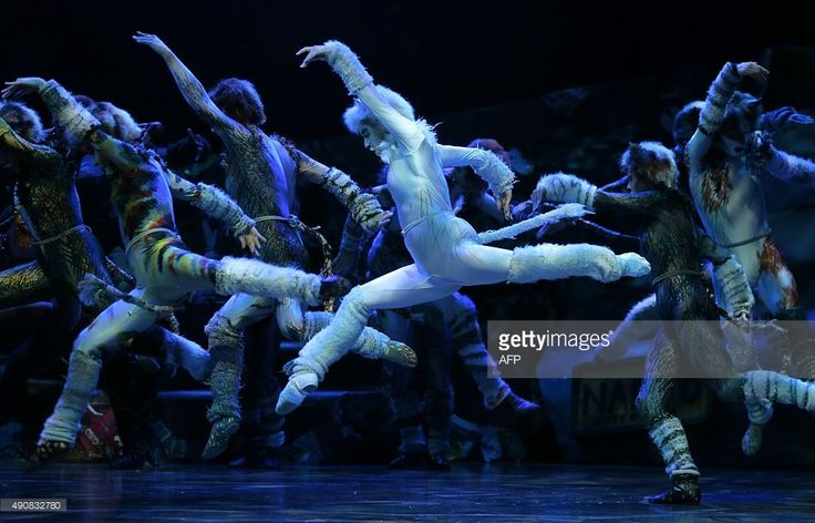 Cast members perform excerpts of the musical 'Cats' on October 1, 2015 on stage at the Theatre de Mogador in Paris, ahead of the start of 90 performances of the musical at Theatre Mogador from October 1, 2015 through January 10, 2016. AFP PHOTO / JACQUES DEMARTHON