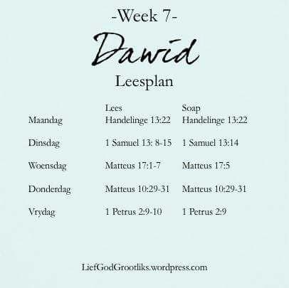 {Dawid Sy Storie Is Ons Storie} - Dawid die man na God se hart - Week 7  - Leesplan