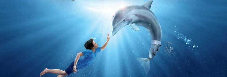 """#SVT """"L'Incroyable Histoire de Winter le dauphin"""" 2011 de Ch.Martin Smith  sur @mycineplus http://seewinter.com/"""