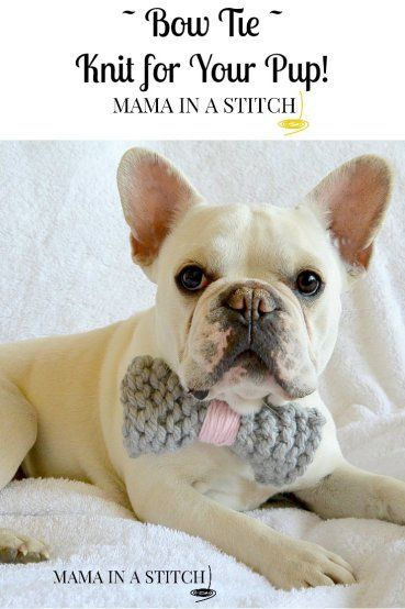 Knit Bow Tie and Pom Pom Collar, free knitting patterns by Mama in a Stitch ...