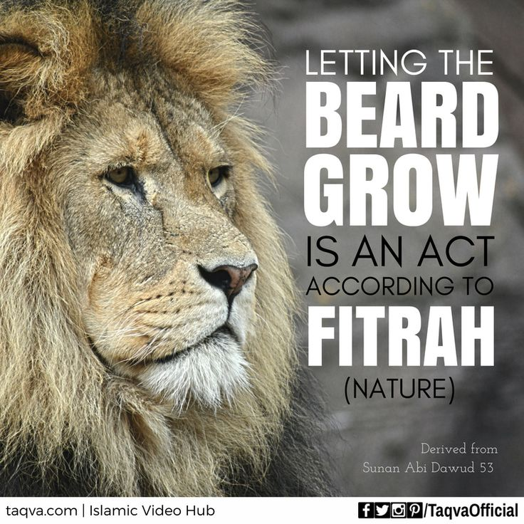 "Narrated Aisha, Ummul Mu'minin: ""The Messenger of #Allah (ﷺ) said: Ten are the acts according to fitrah (nature): clipping the moustache, letting the beard grow, using the tooth-stick, cleansing the nose (Al-Istinshaq) with water, cutting the nails, washing the finger joints, plucking the hair under the arm-pits, shaving the pubes, and cleansing one's private parts (after easing or urinating) with water. The narrator said: I have forgotten the tenth, but it may have been rinsing the mouth."""