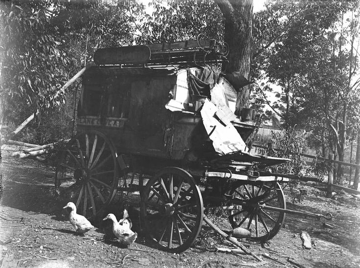 Horse drawn carriage which was used as a bus from Gordon to Milsons Point in the North Shore of Sydney in 1908.