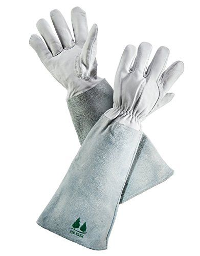 Leather Gardening Gloves by Fir Tree. Premium Goatskin Gloves With Cowhide Suede Gauntlet Sleeves. Perfect Rose Garden Gloves. Men's and Women's Sizes. M-8 - See Size Chart Photo-  >>> Discover this special product, click the image : Gardening DIY