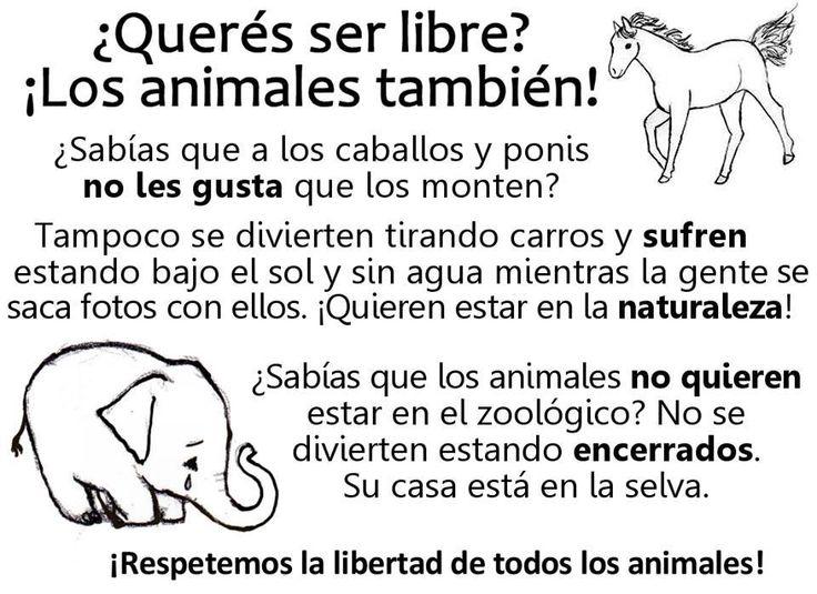 Libertad a todos los seres sintientes