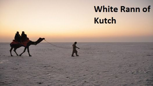 Experience the #Beautiful be wilderness at the White #Rann of #Kutch – Great destination, a truly heaven in the world, near #Pakborder. One should go at' #Rannutsav' time especially between Decembers and Januarys every year. The #Rann of #Kutch, also known as the Great Rann of Kutch (there's a Little Rann of Kutch as well), is a remarkable place to visit in #Gujarat.