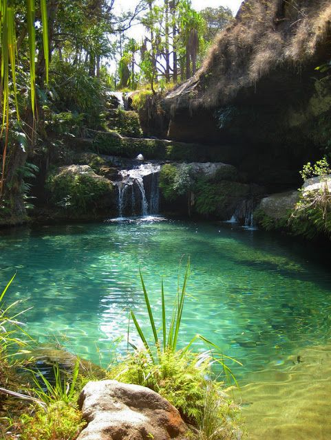 Natural pools at Isalo National Park  |  Ihosy, Madagascar