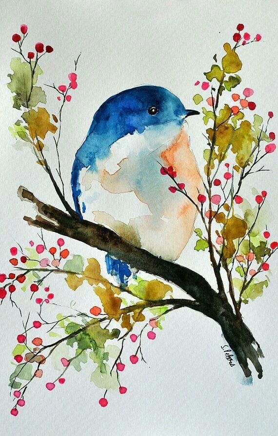 Petite oiseau