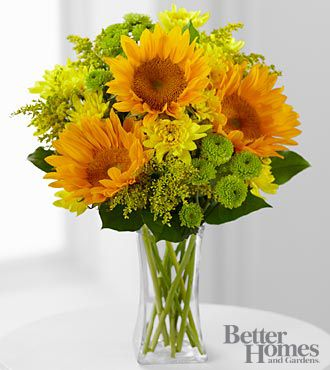 FTD® Sun Sensation Bouquet by Better Homes and Gardens® - 12 Stems - VASE INCLUDED- Shown