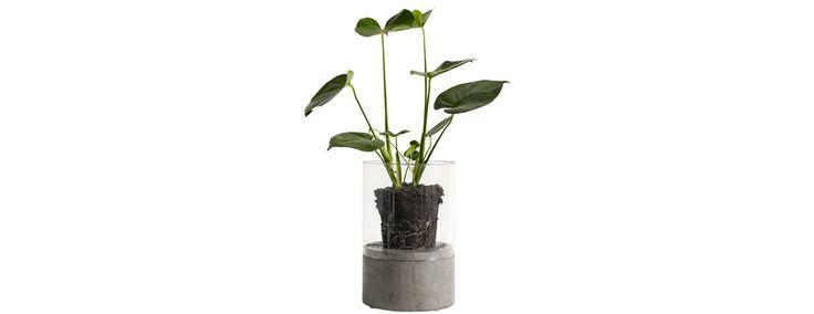 Combi lantern/flower pot - Design from BoConcept