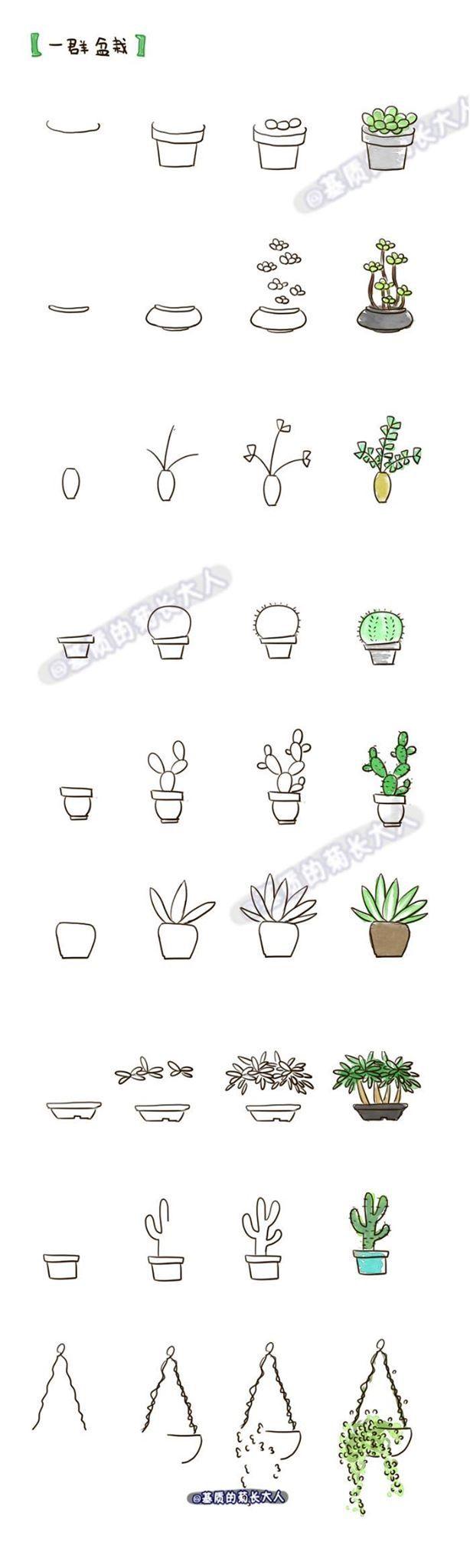 Roślinki, rysowanie -krok po kroku