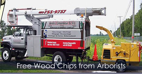 Free wood chips from arborists - How to get free wood chips