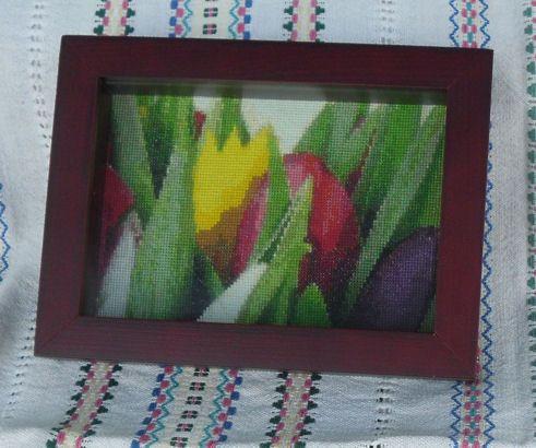 Tulips 2, year 2007