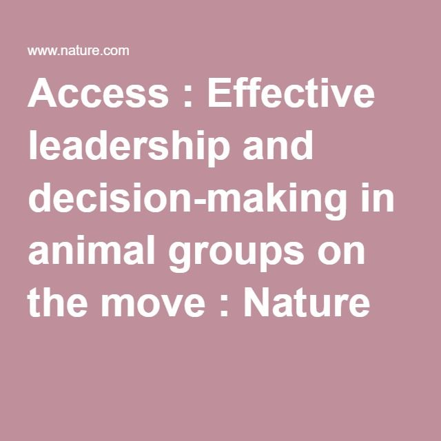 leadership and group decision making Strategic leaders and teams why be concerned about consensus team  decision making at the strategic level what is so important about that.