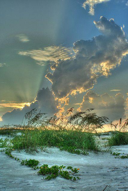 Anastasia State Park, Florida, USA