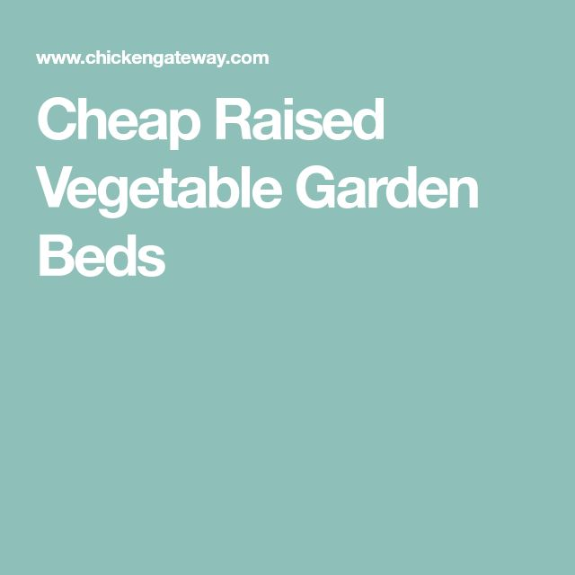 how to build a raised vegetable garden cheap