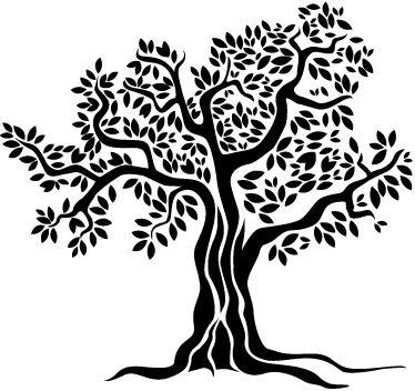 Old Olive Tree Monochrome Wall Sticker