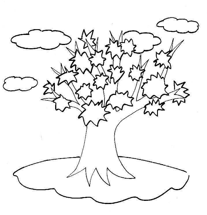 albero_autunno_29.jpg (717×745)