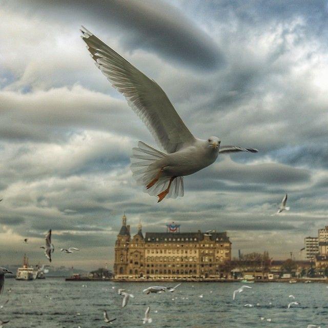 İstanbul By Tolga Sıtkı