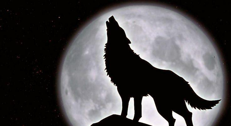 ¡La Luna llena no tiene la culpa! De lo que sea que la culpes, es inocente.