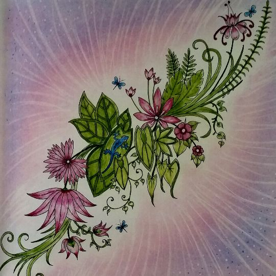 Artwork On Johanna Basfords Colouring Gallery BasfordFloral RibbonColouring TechniquesDrawing ProjectsJunglePrismacolorAdult ColoringColoring
