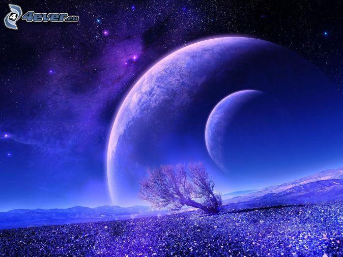 Planeten, einsamer Baum, Sternenhimmel