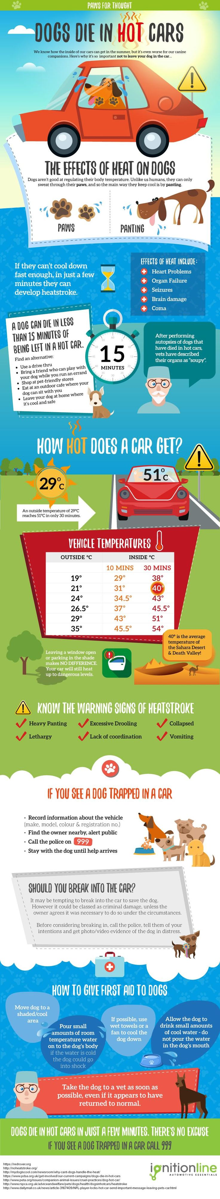 #Dogs Die in #HotCars - the dangers of leaving them there:  (via Infographic Journal) #infographic