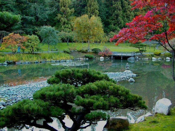 jardines japones - Jardines Japoneses