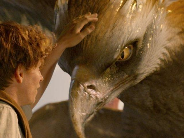 I got: Thunderbird! Which Fantastic Beast Are You, Really?