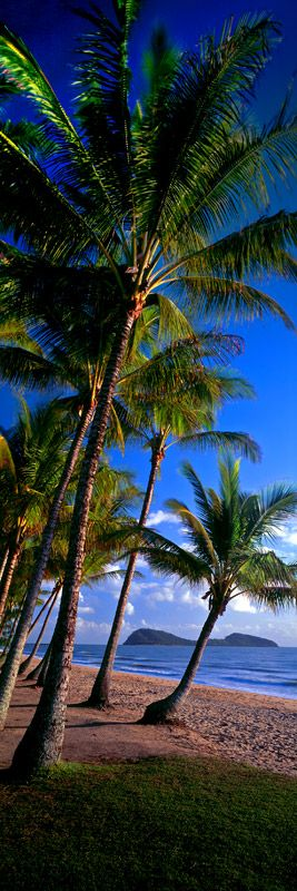 Palm Cove by Mark Gray.  LET US INSPIRE YOU ~ DREAM, CONCIEVE, CREATE YOUR DREAM HOME. eco@jumrum, the ultimate rural residential land release in North Queensland. www.ecojumrum.com